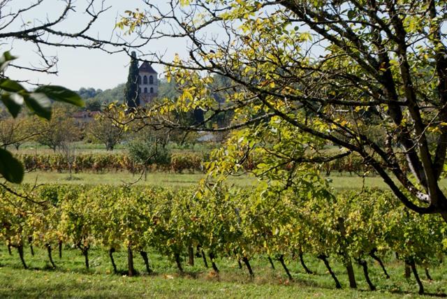 X 2015 DORDOGNE (24) octobre Dordogne et Caillac (près de Cahors) 1a-4d25807