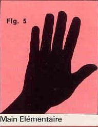 La forme générale de vos mains Paume-l-mentaire-figure-5-4c067f5