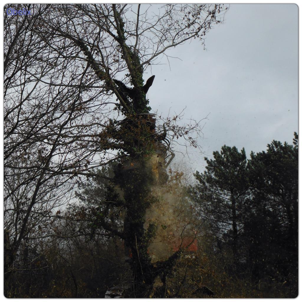 Aquitaine Bois Energie - Technique TP Le boisénergie en aquitaine
