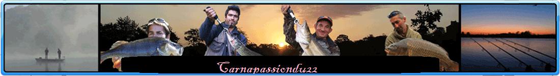 carnapassiondu22 Index du Forum