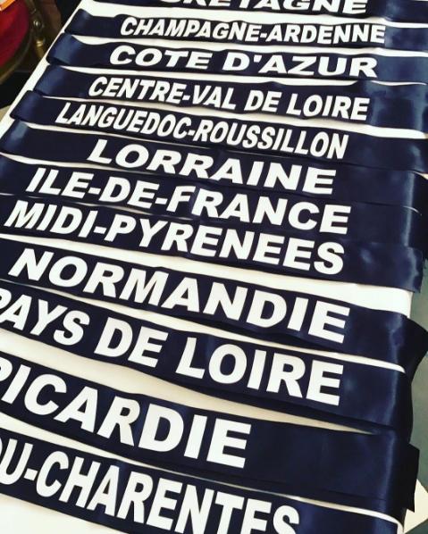 Miss France 2017 - Montpellier [OFFICIEL] Sans-titre-1-50f0cec