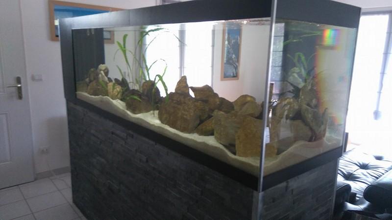 Mon projet de bac 920 litres dans la nouvelle maison 14232498_10210012...641723_n-504ece3