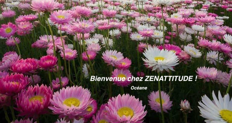 Ensemble ZenAttitude Toujours Index du Forum