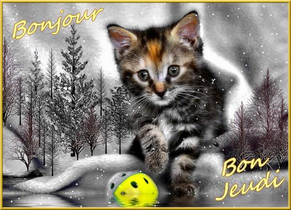 Les bonjour et bonne nuit du  1er janvier 2019 AU 1er Janvier 2020   - Page 6 Chathiv-55b0b9d