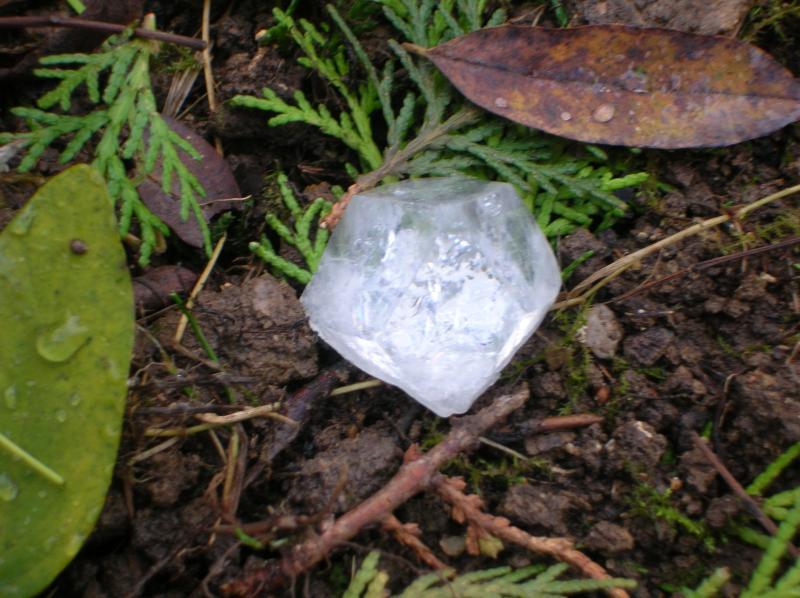 Mes Minéraux <3 Dscn2388-489c4ef