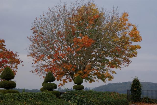X 2015 DORDOGNE (24) octobre Dordogne et Caillac (près de Cahors) Va-056-4d1796d