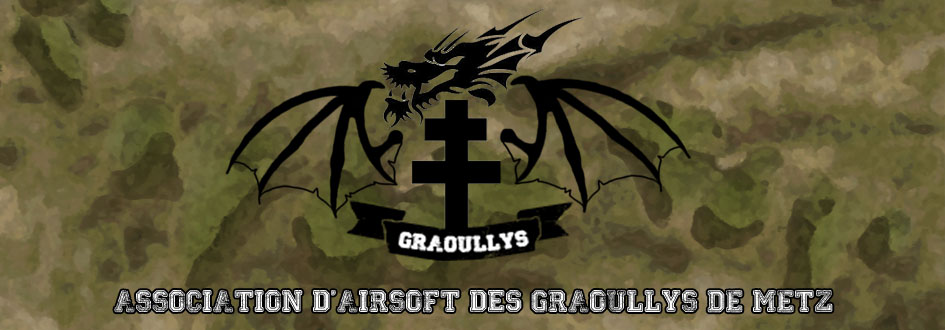 Groupe d'intervention des Graoullys de Metz Index du Forum