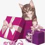 Déposer une demande de cadeaux de bienvenue