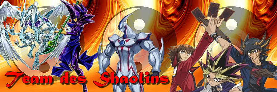 team des shaolins Index du Forum