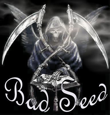 BaD SeeD Index du Forum