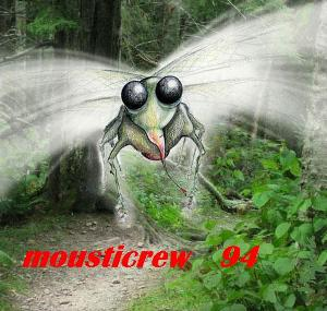 mousticrew 94 Index du Forum