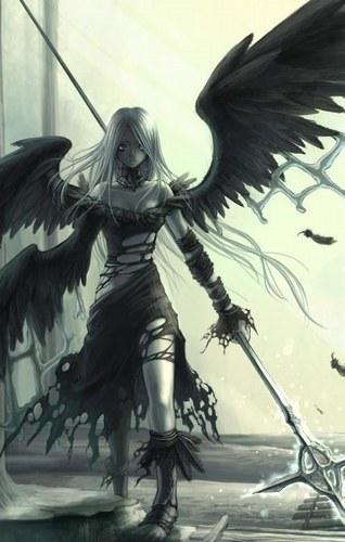 wings road Index du Forum