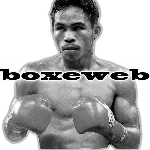 boxe web Forum Index