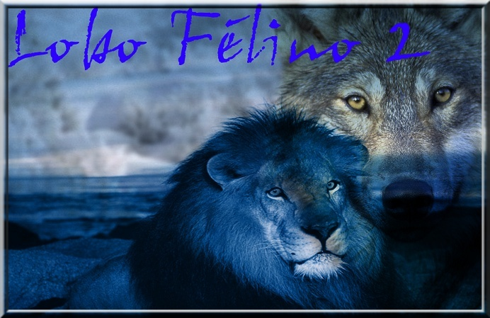 Lobo Felino Forum Index