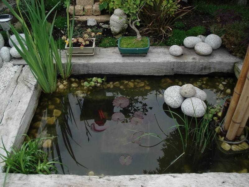 Ma maison mon havre de paix mon jardin japonais - Une maison un jardin berthenay versailles ...