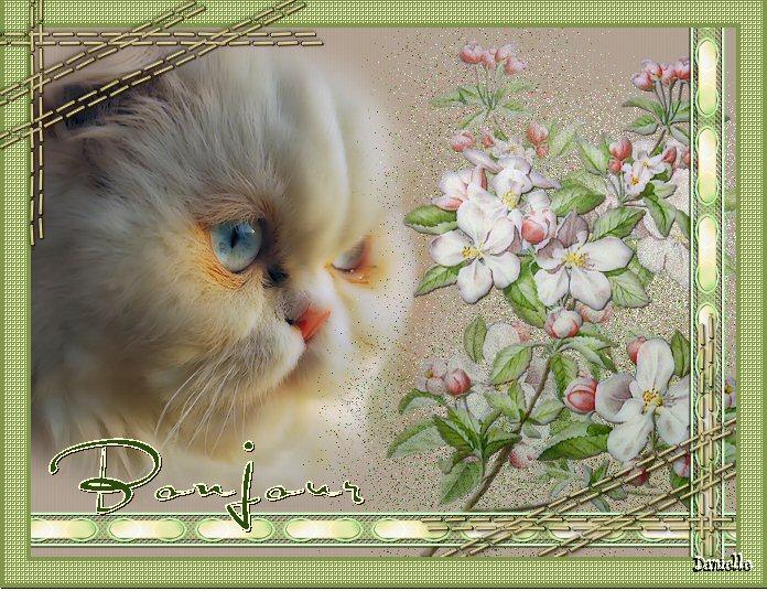 BON LUNDI Image10-1a70089