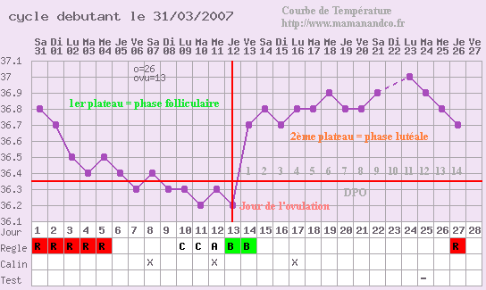 photo comment comprendre la courbe d ovulation