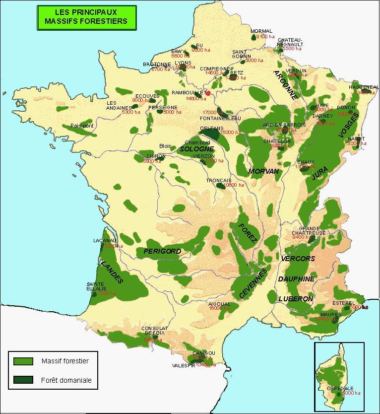 carte-des-forets - Photo