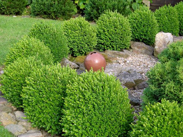 forum jardin au naturel jardins de cur. Black Bedroom Furniture Sets. Home Design Ideas