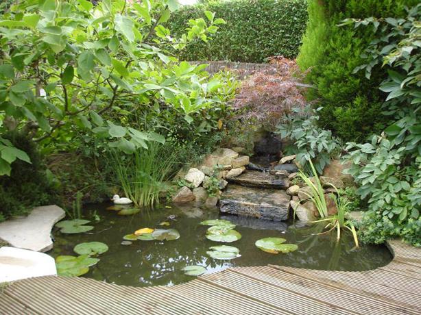 passions et partage jardin d 39 eau bassin r alisation