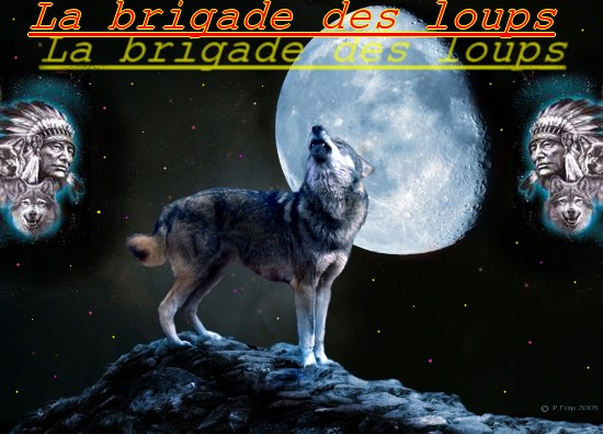 La Brigade des loups Index du Forum