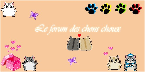 Les chons choux!! Index du Forum
