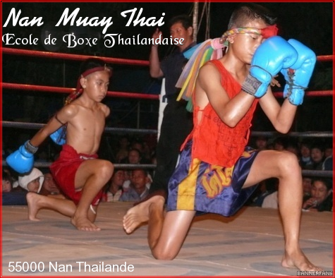 Nan Muay Thai Forum Index