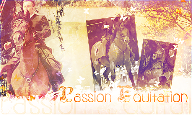Passion Equitation Forum Index