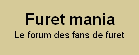 Forum furet : furet-mania Forum Index