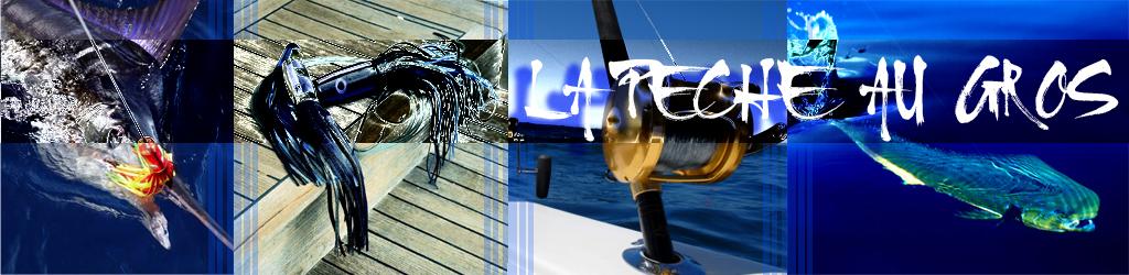 La pêche au gros à la Réunion Index du Forum