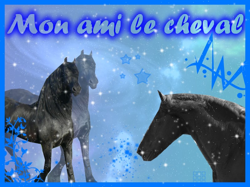 Mon Ami Le Cheval Index du Forum