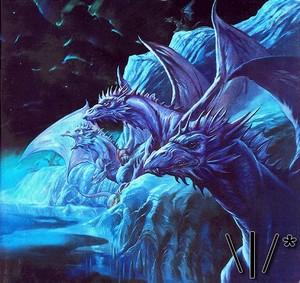 Dragons \|/*