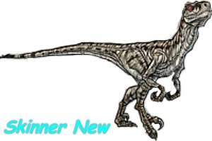 Skinner new