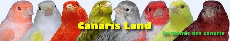 Canaris Land Index du Forum