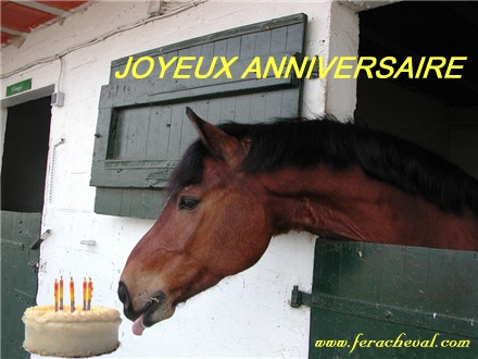 http://img.xooimage.com/files42/2/9/c/anniversaire-cheval-62df99.jpg