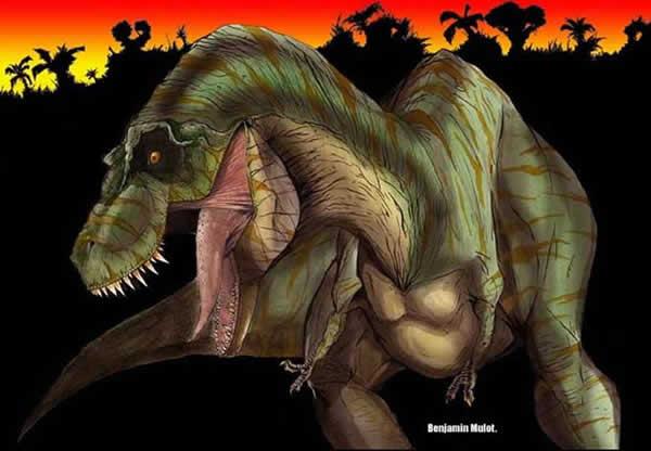 Passions et partage les dinosaures tyrannosaurus - Dessin de tyrannosaure ...