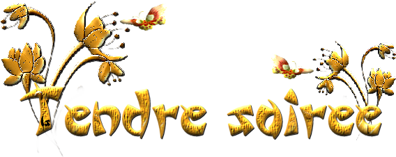 BONNE SOIREE DU MERCREDI DU 09/04/2014 Tag2_bsr_isis09-157e259