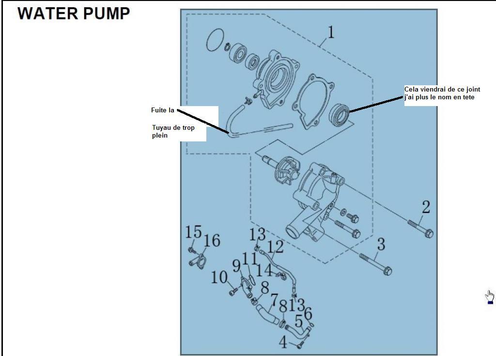 changer pompe a eau tuto 15 changer sa pompe a eau derbi euro 3 youtube changer une pompe a. Black Bedroom Furniture Sets. Home Design Ideas
