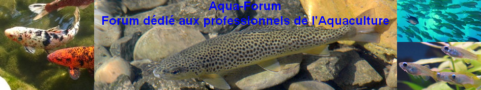 Aqua-Forum  Index du Forum