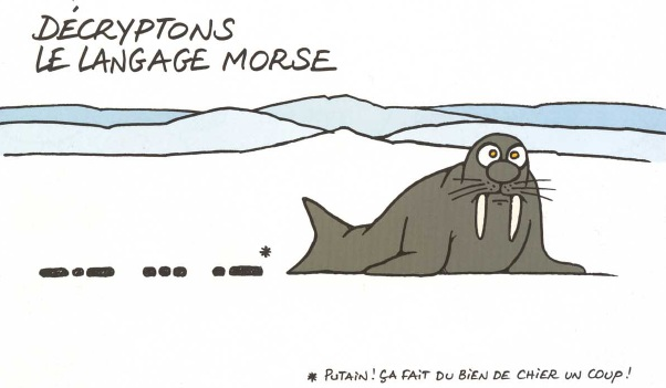 INsoliteRIgoloCOquin - Page 17 Language-morse-17ee1a5