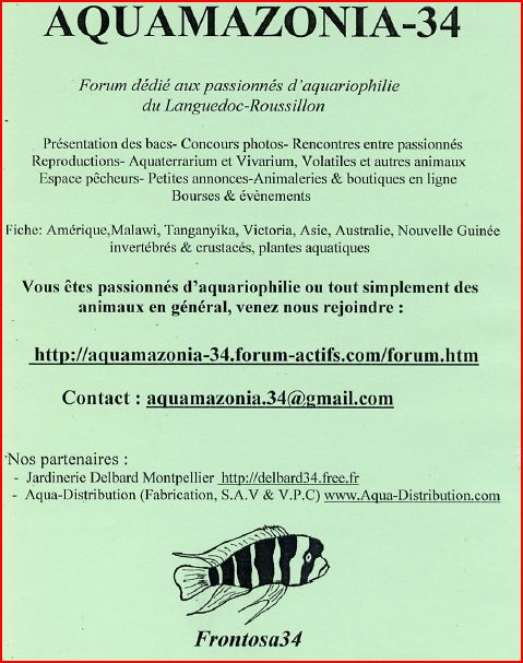 forum rencontre montpellier