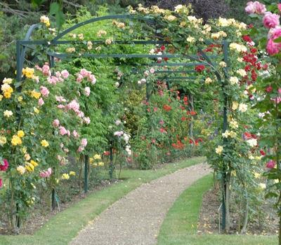 Passions et partage les jardins dans les villes - Le jardin des fleurs poitiers ...