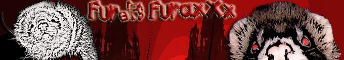 MUSTELA-PARADISE Index du Forum