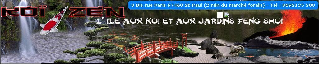 Koï Zen, carpe koi les passionnés Réunionais 974 Index du Forum