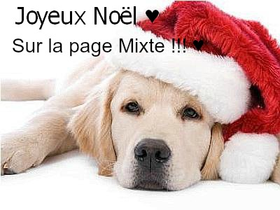 La Page Mixte Index du Forum
