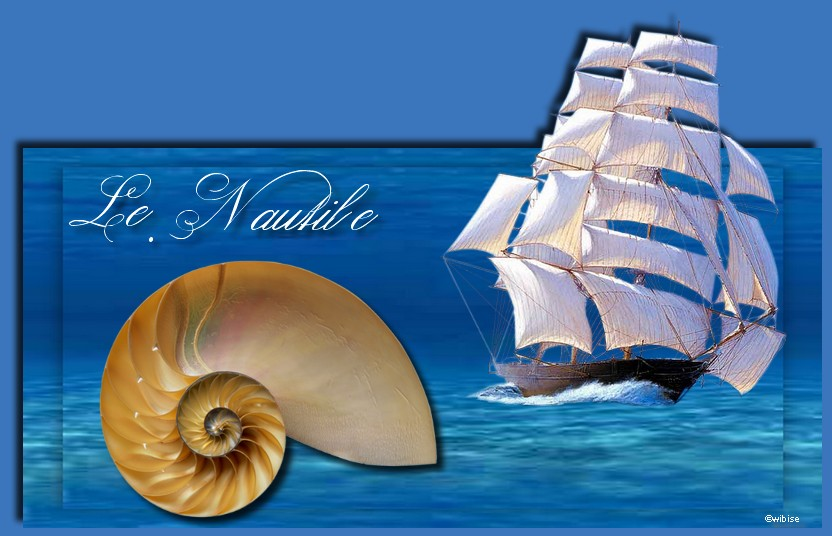 Le.Nautile Forum Index