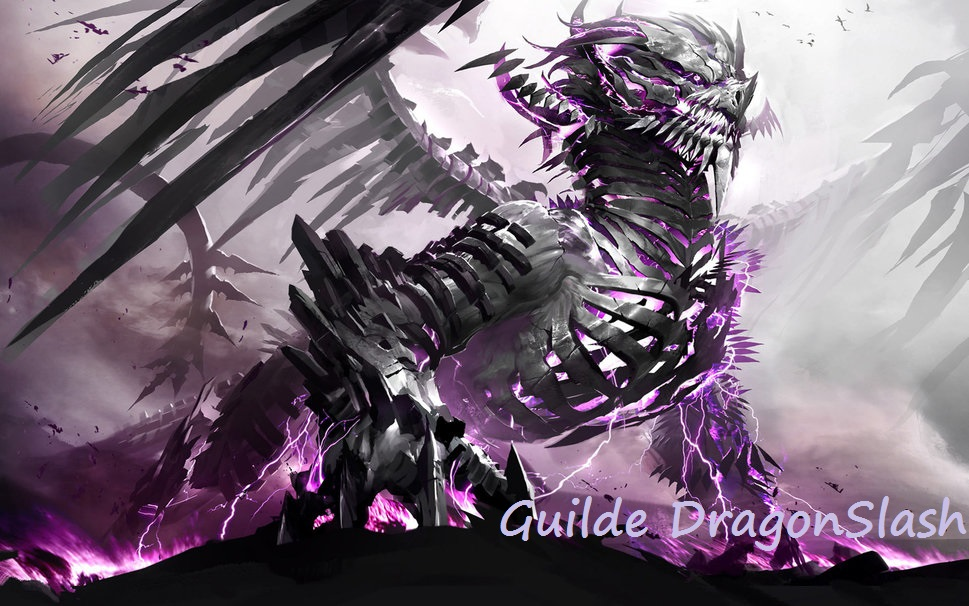 guilde dragon slash - tera Index du Forum