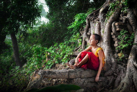 Thai forest Monastery Forum Index