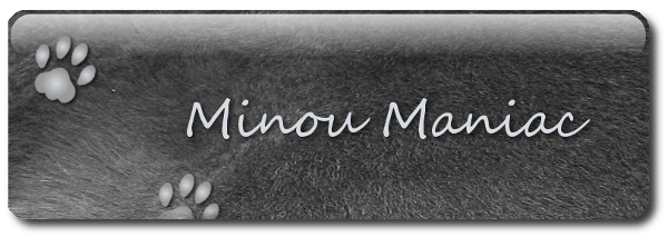 minou maniac Index du Forum