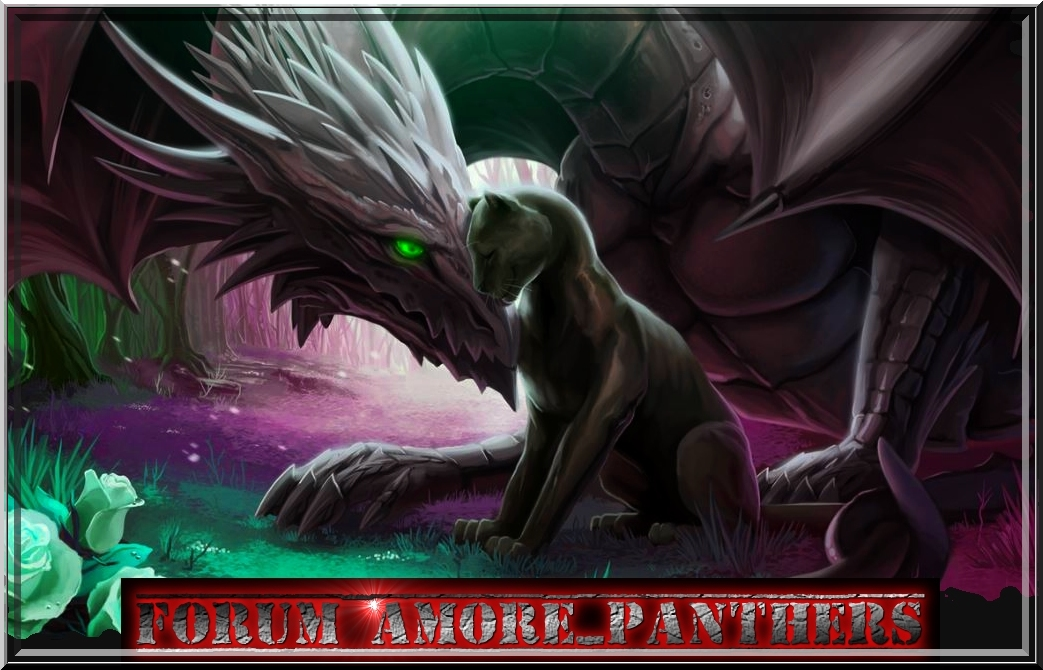 amore_panthers Index du Forum